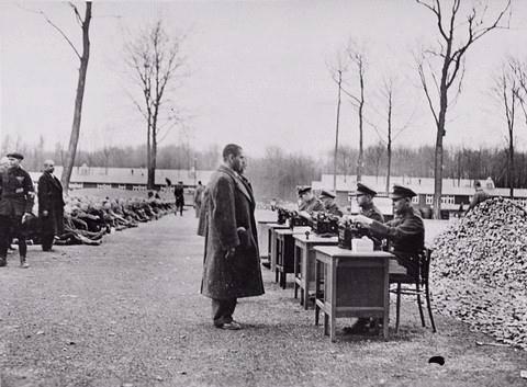 essays holocaust concentration camps