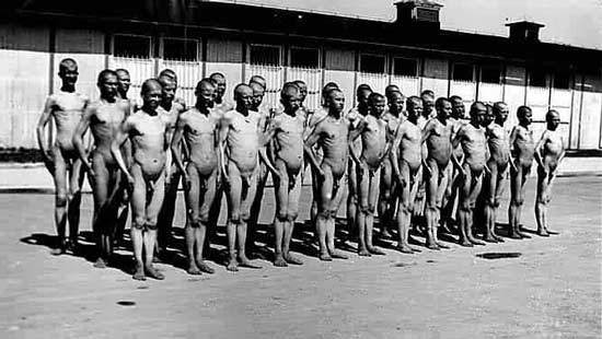 from Damon gay concentration camp